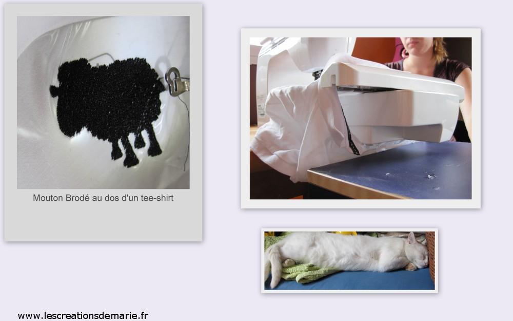 mouton broderie machine